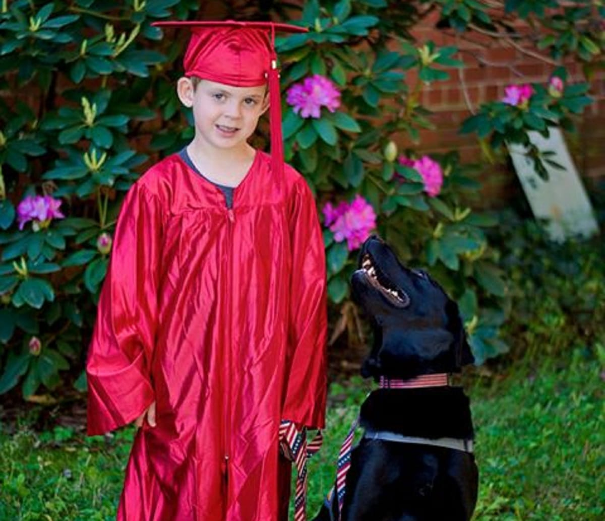 Dogs calms kids
