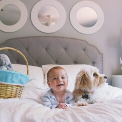 Baby And Pup Enjoy Sibling-like Love