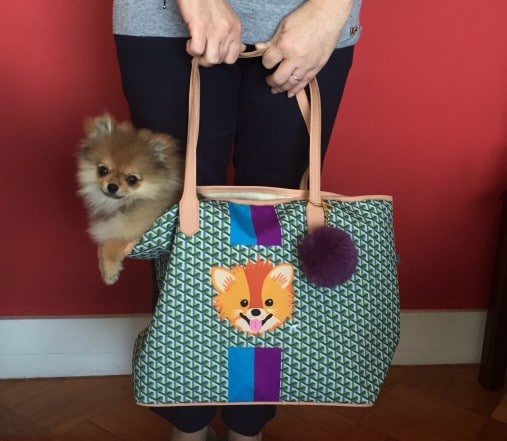 rules to carry dogs in bag